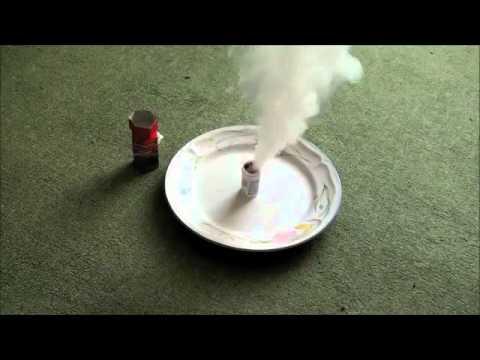 Flea Bombs
